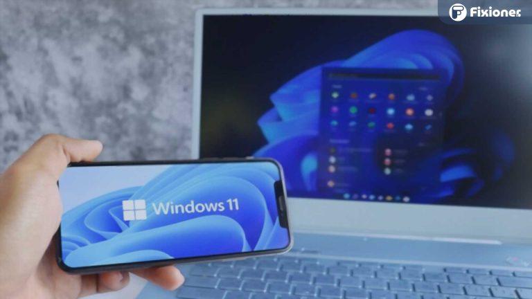 Windows 11 Palsu