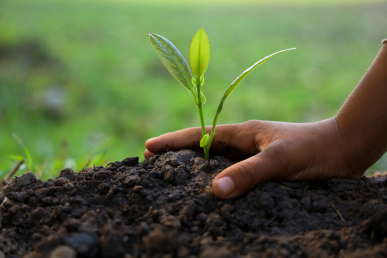 Eco Farming: https://www.ecofarming.support/